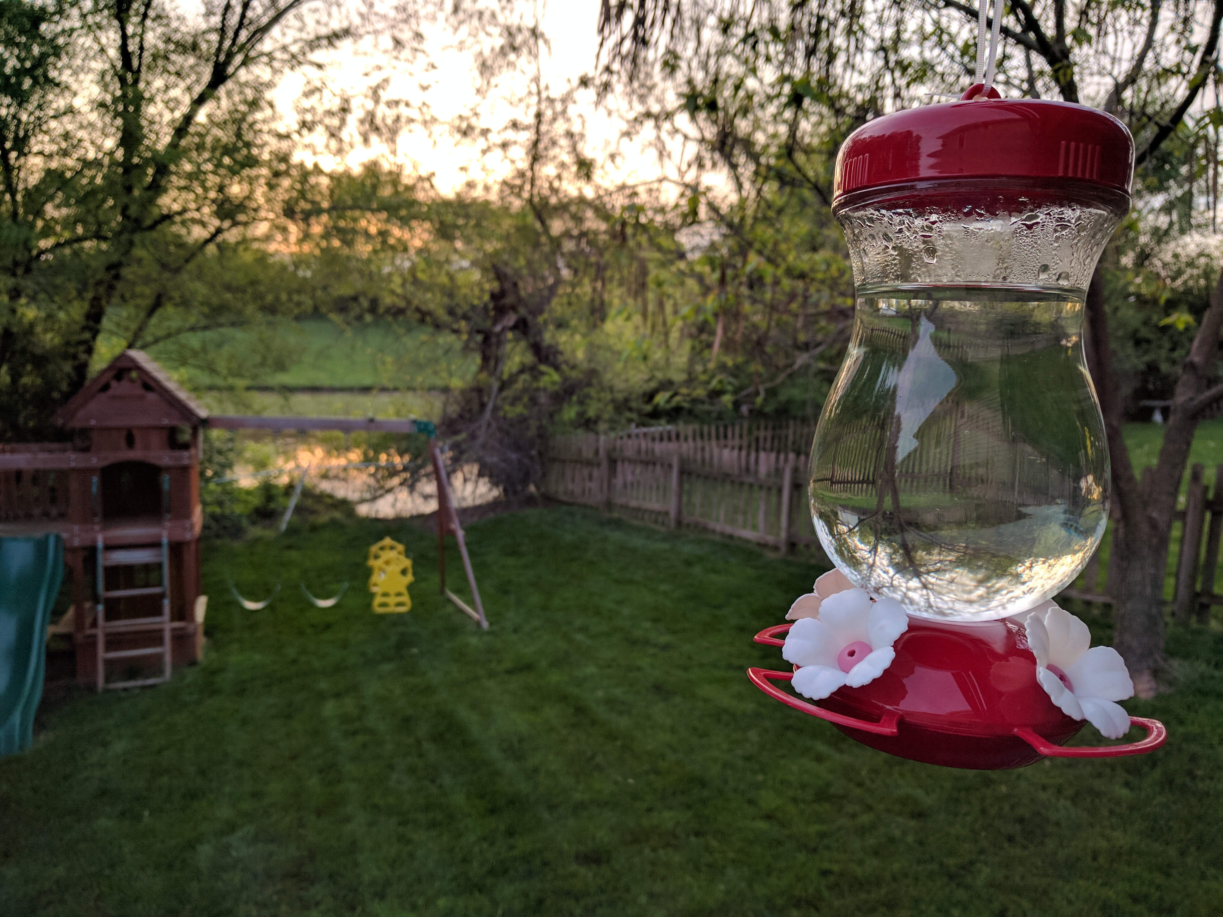 Bring on the hummingbirds